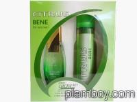 Дамски подаръчен комплект Citrus Bene natural сравнен със зелено C-Thrue